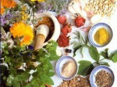 Sedef Hastalığından Bitkilerle Kurtulanların Görüşleri